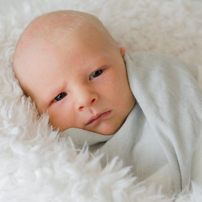 newborn_gallery