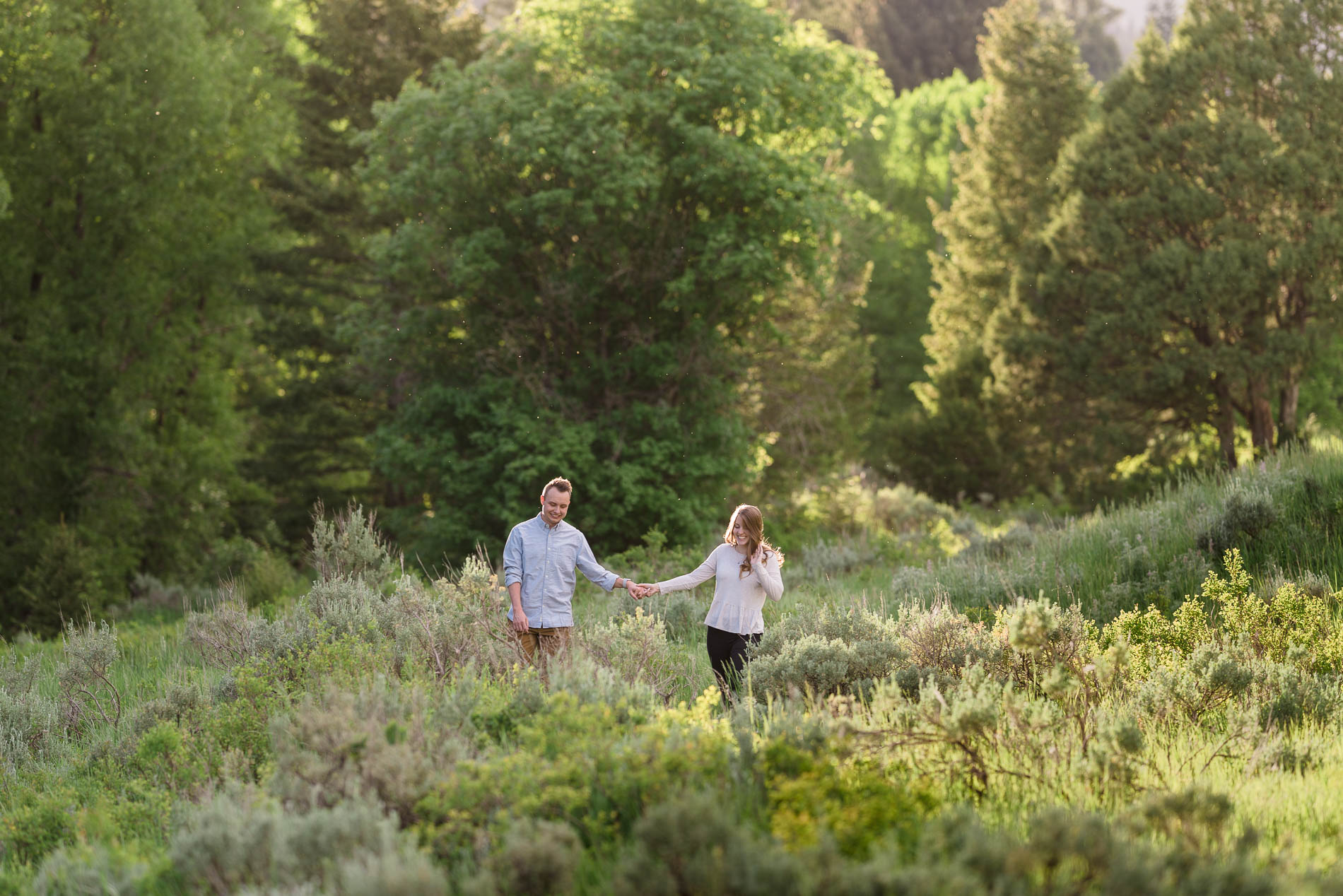 Couple walking through the brush with pine trees in the background for engagement photography at Tibble Fork.
