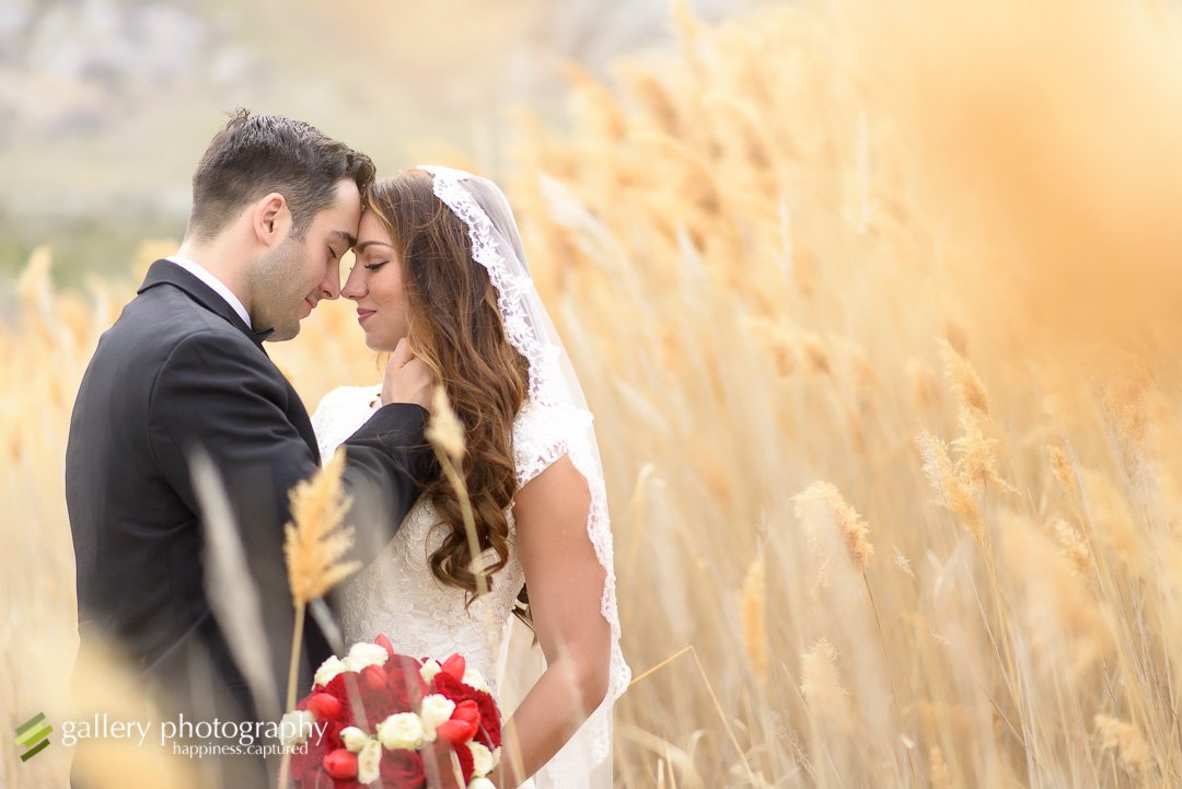 A bride and groom touch foreheads among tall grasses for Utah bridal photography.