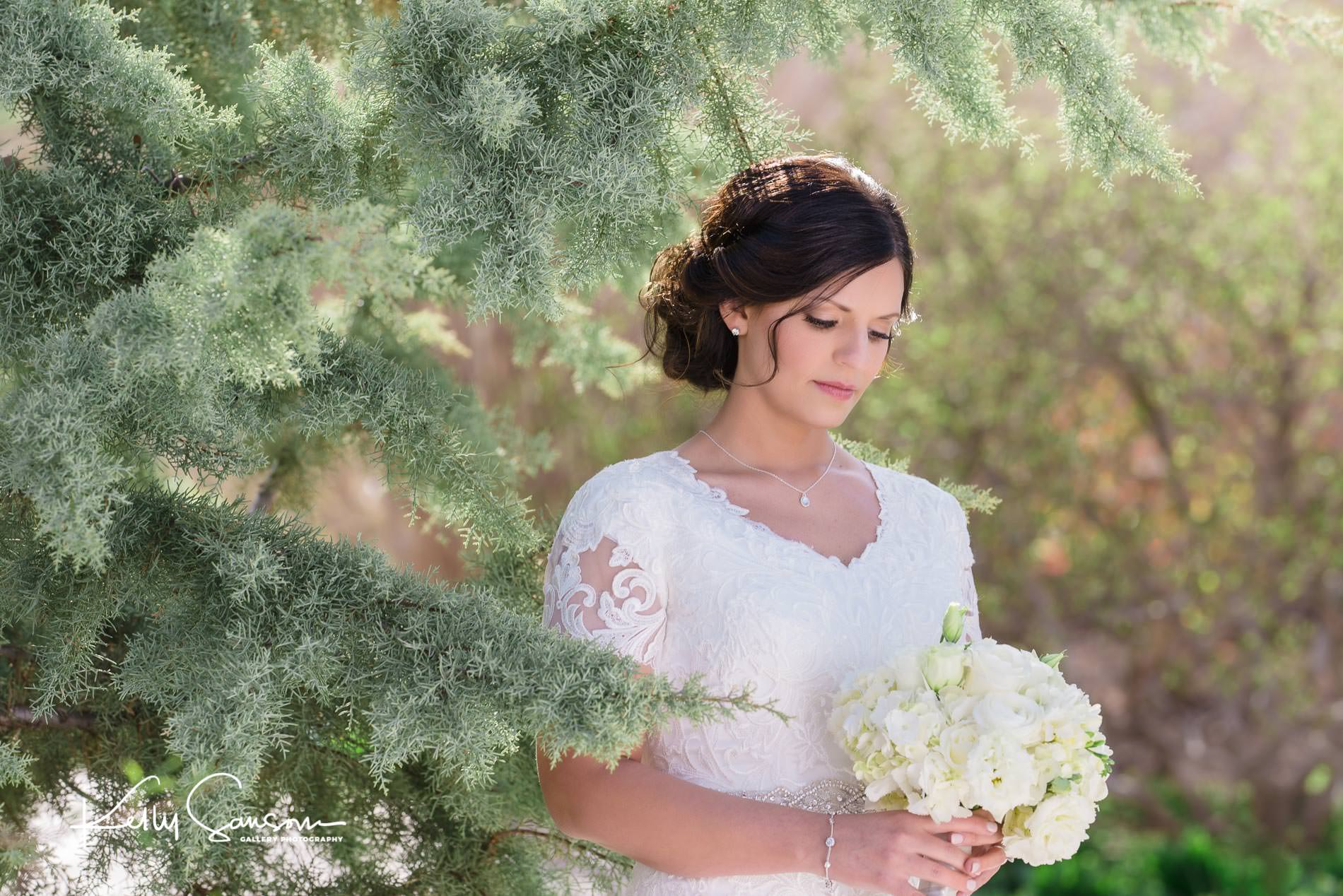 A bride looks at her bouquet next to a pine tree for Utah bridal photography.