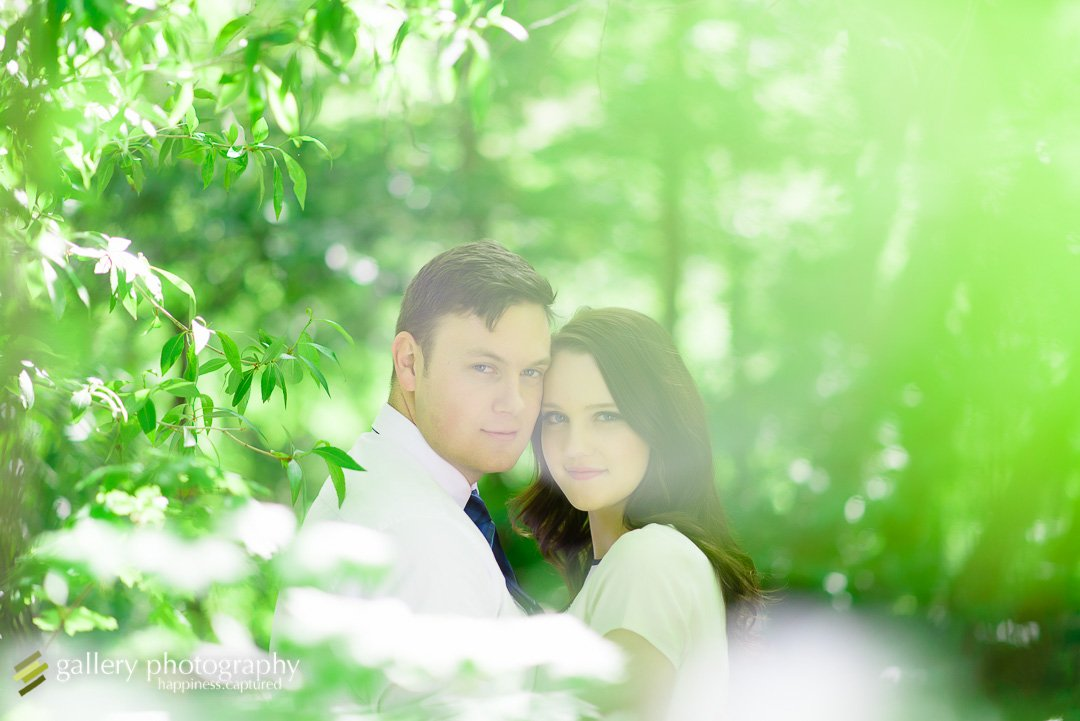 A couple looking through trees cuddled together for Utah engagement photography.