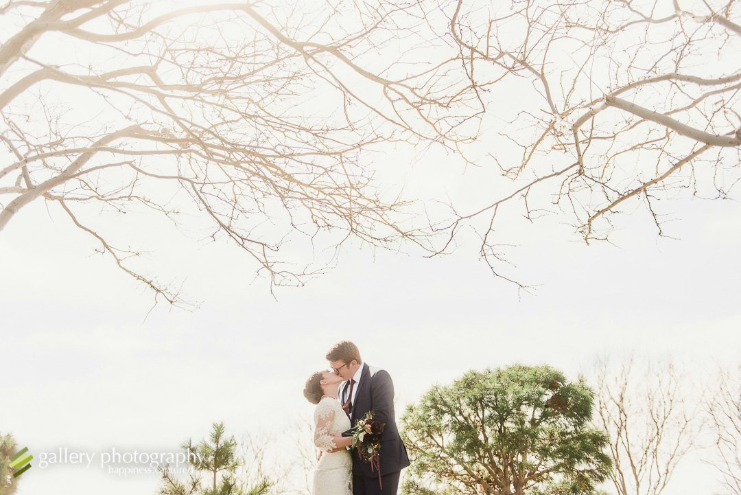 A couple kissing with trees above at the Bountiful LDS temple for Bountiful wedding Photography.