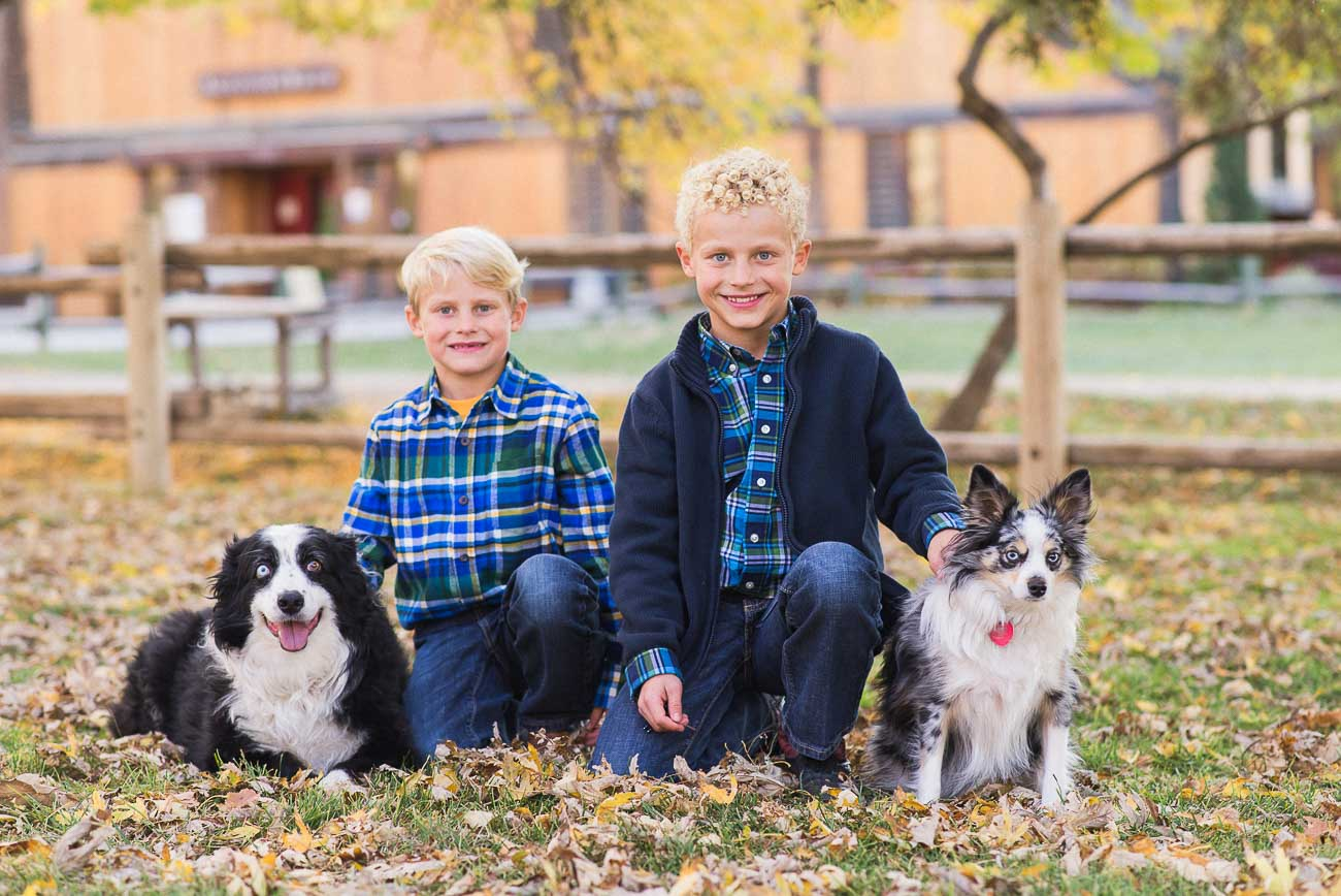 Two brothers posing with their dogs on the grass for children photography at wheeler farm.
